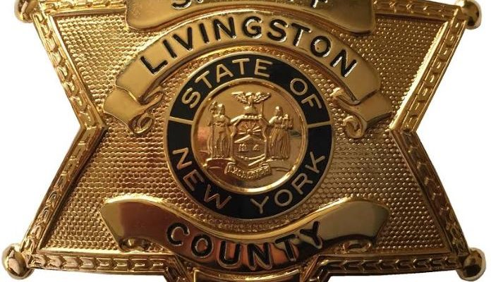 Livingston County Sheriff's Weekly Police Report