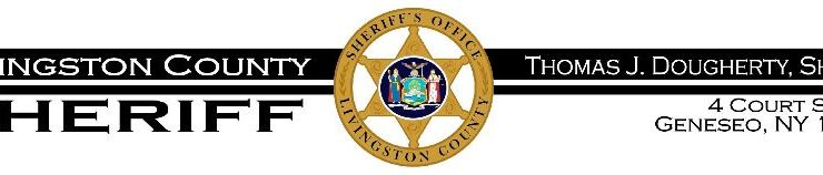 Livingston County Sheriff's Activity Report