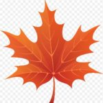 25th Annual Maple Conference This January