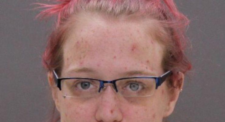 Drug Arrest On 390