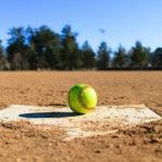 Dansville Softball Team Suffers Semi-final Loss to Newark